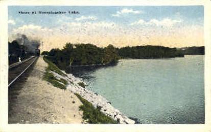 . - Messalonskee Lake, Maine ME Postcard