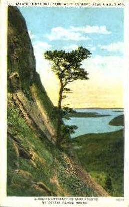 Somes Sound - Mt. Desert Island, Maine ME Postcard