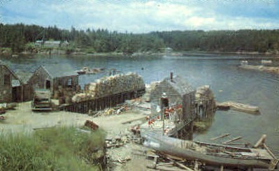 A Typical Maine Fishing Village - Misc Postcard