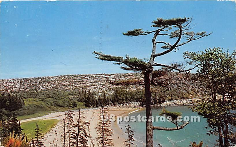 Sand Beach - Mount Desert Island, Maine ME Postcard