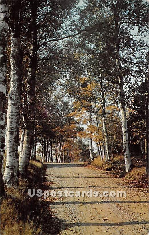 Entrance to Whtie Birches Campground - Mount Desert Island, Maine ME Postcard