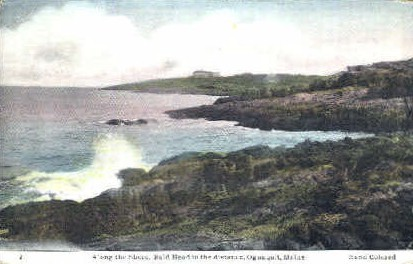 Along the Shore - Ogunquit, Maine ME Postcard