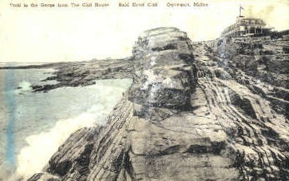 Trail to the Gorge, Bald Head Cliff - Ogunquit, Maine ME Postcard