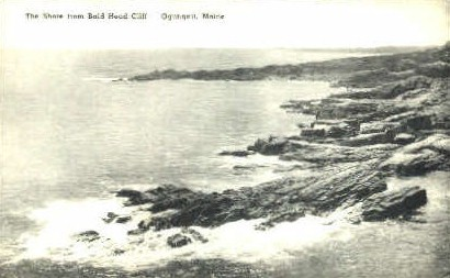 The Shore, Bald Head Cliff - Ogunquit, Maine ME Postcard