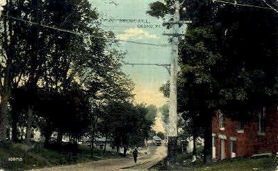 Bridge Hill - Orono, Maine ME Postcard