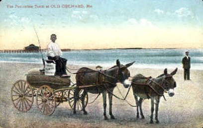 The Peanutine Team - Old Orchard Beach, Maine ME Postcard