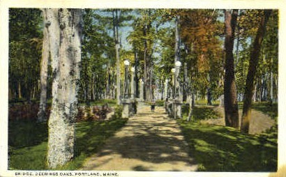 Bridge, Deerings Oaks - Portland, Maine ME Postcard