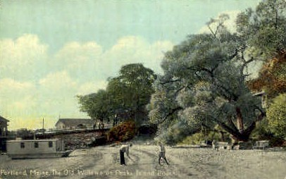 The Old Willows, Peak Island Beach - Portland, Maine ME Postcard