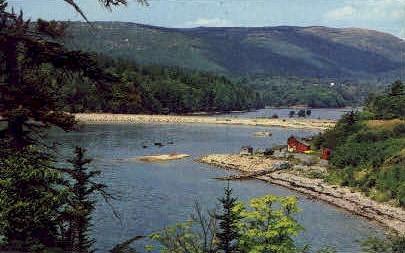Otter Cove - Acadia National Park, Maine ME Postcard