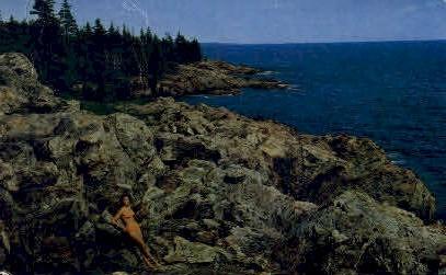 Ocean Drive, Acadia National Park - Mt. Desert Island, Maine ME Postcard