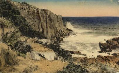 Bald-Head  - Ogunquit, Maine ME Postcard