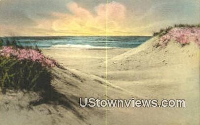 Sand Dunes - Ogunquit, Maine ME Postcard