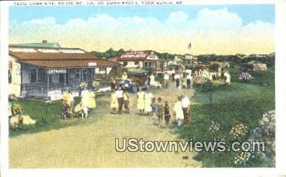 Davis Camp Site - York Beach, Maine ME Postcard