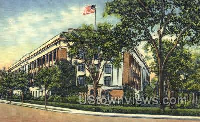 University of Michigan Museum - Ann Arbor Postcard