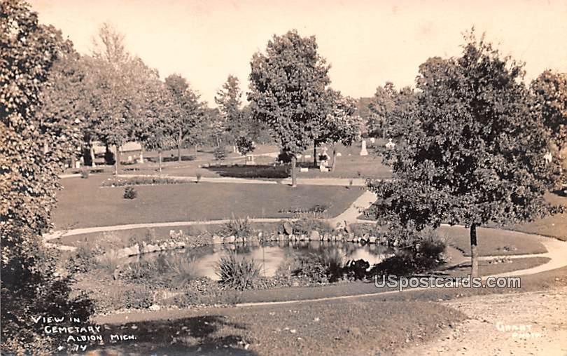 View in Cemetery - Albion, Michigan MI Postcard