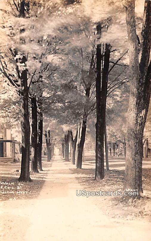 Walk on E Eric Street - Albion, Michigan MI Postcard