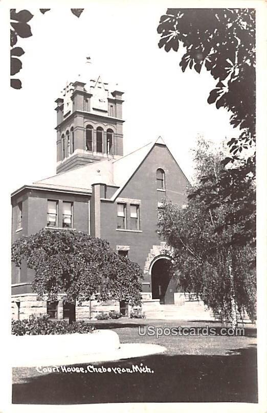 Court House - Cheboygan, Michigan MI Postcard