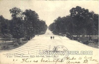 Central Avenue, Belle Isle Park - Detroit, Michigan MI Postcard