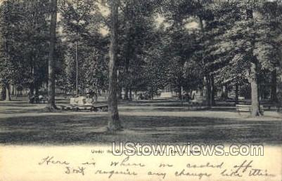Under the Oaks, Belle Isle Park - Detroit, Michigan MI Postcard