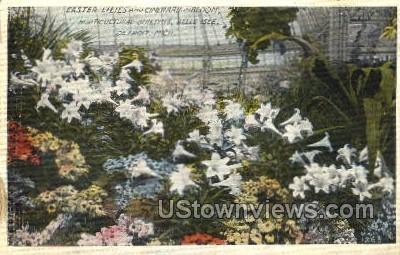 Horticultural Building, Belle Isle - Detroit, Michigan MI Postcard