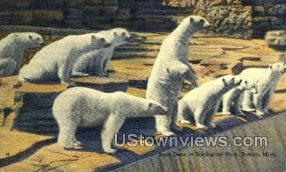 Bear Dens in Zoological Park - Detroit, Michigan MI Postcard