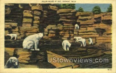 Polar Bears at Zoo - Detroit, Michigan MI Postcard