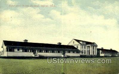 Tuberculosis Society Hospital - Detroit, Michigan MI Postcard