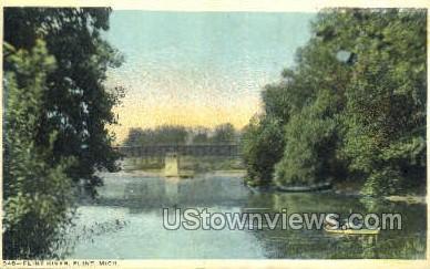 Flint River - Michigan MI Postcard
