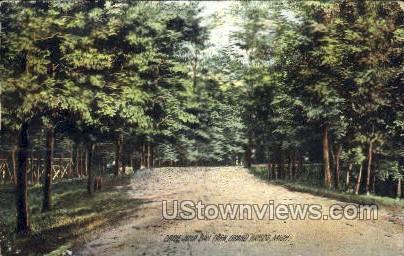 John Ball Park - Grand Rapids, Michigan MI Postcard
