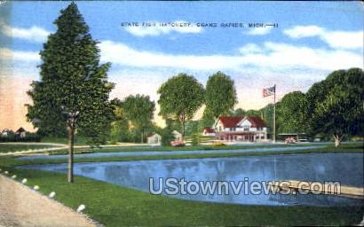 State Fish Hatchery - Grand Rapids, Michigan MI Postcard