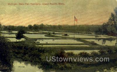 Michigan State Fish Hatchery - Grand Rapids Postcard