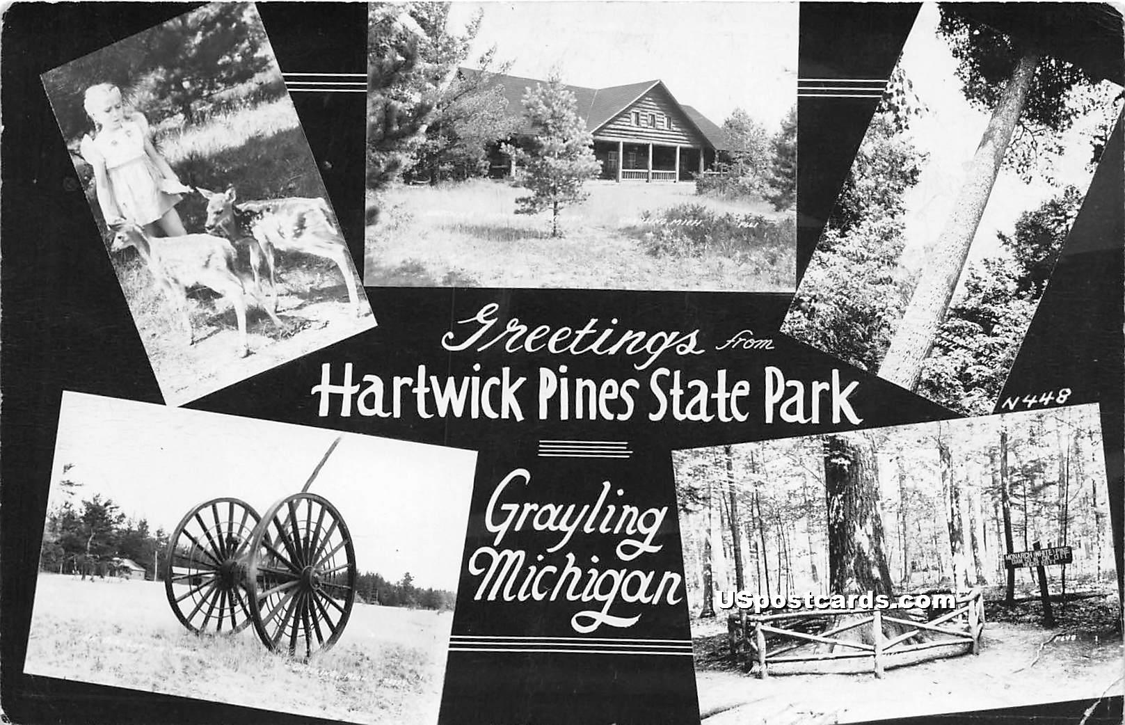 Hartwick Pines State Park - Grayling, Michigan MI Postcard