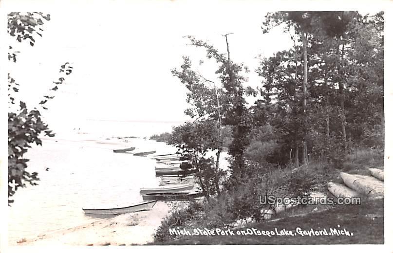 Michigan State Park - Gaylord Postcard