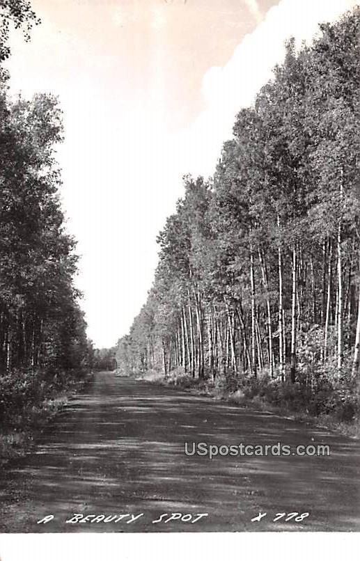 Beauty Spot - Gaylord, Michigan MI Postcard