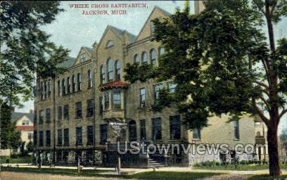 White Cross Sanitarium - Jackson, Michigan MI Postcard