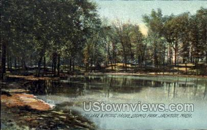 The Lake and Picnic Grove, Loomis Park - Jackson, Michigan MI Postcard
