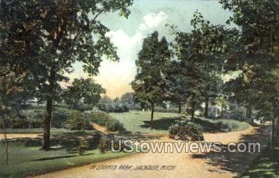 In Loomis Park - Jackson, Michigan MI Postcard
