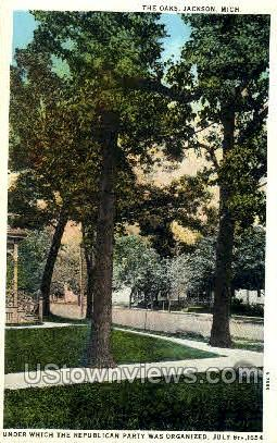 The Oaks - Jackson, Michigan MI Postcard