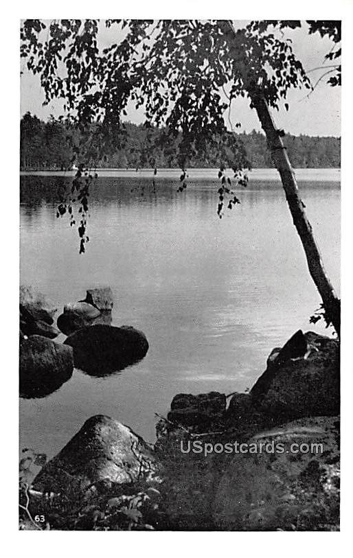 Water View - MIsc, Michigan MI Postcard