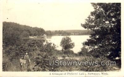 A Glimpse of Pickerel Lake - Niles, Michigan MI Postcard