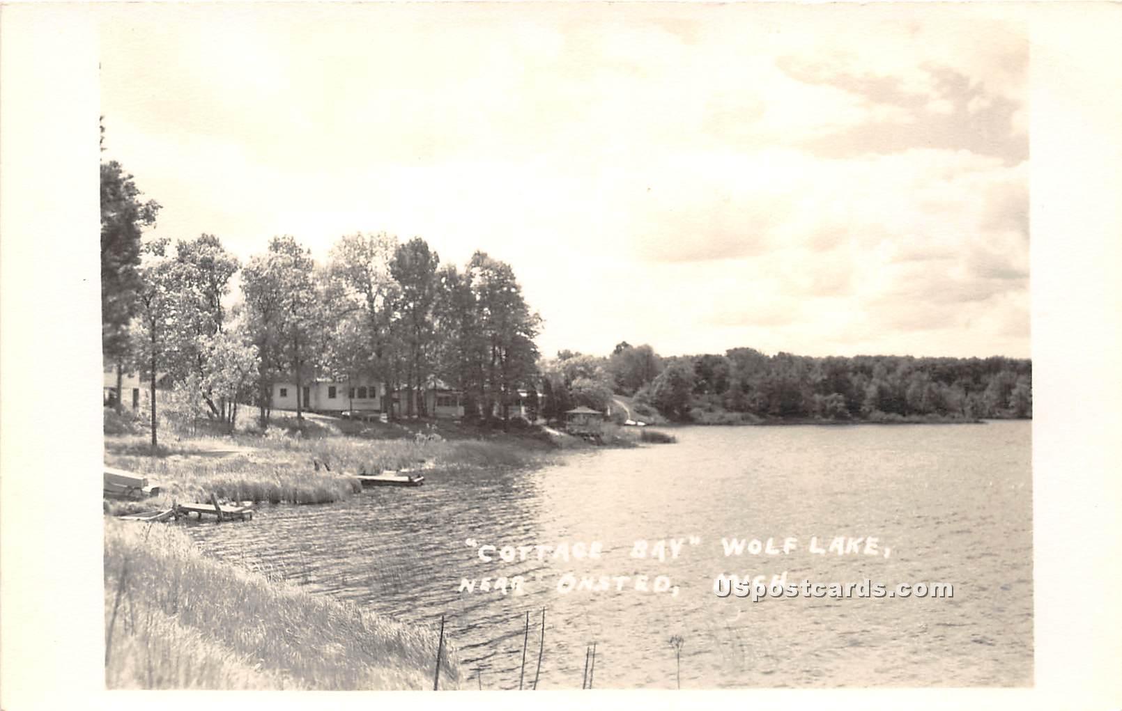 Cottage Bay - Onsted, Michigan MI Postcard