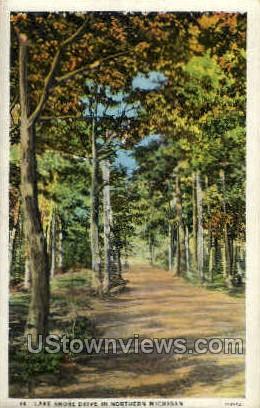 Lake Shore Drive In - MIsc, Michigan MI Postcard