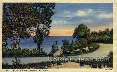 Lake Shore Drive   - MIsc, Michigan MI Postcard