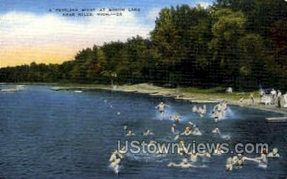 A Familiar Sight at Baron Lake - Niles, Michigan MI Postcard