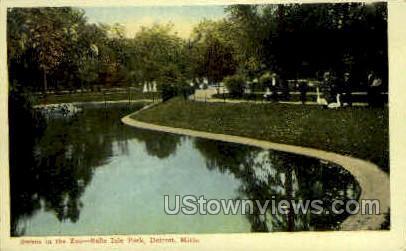 Swans in the Zoo - Detroit, Michigan MI Postcard