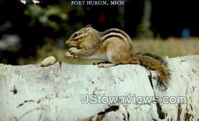 Port Huron, Michigan, MI Postcard