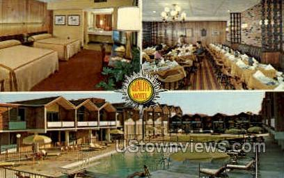 Quality Motel Jackson - Michigan MI Postcard
