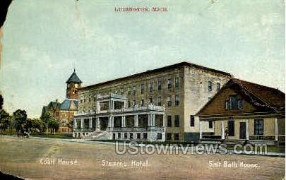 Court House - Ludington, Michigan MI Postcard