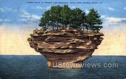 Turnip Rock - Port Huron, Michigan MI Postcard