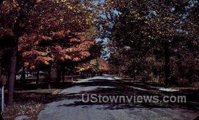 Country Road - Lapeer, Michigan MI Postcard
